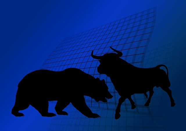 Bull and bear in a Fintech world